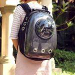 Pets backpack