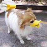 Duck beak-shaped muzzle for dogs. S-size